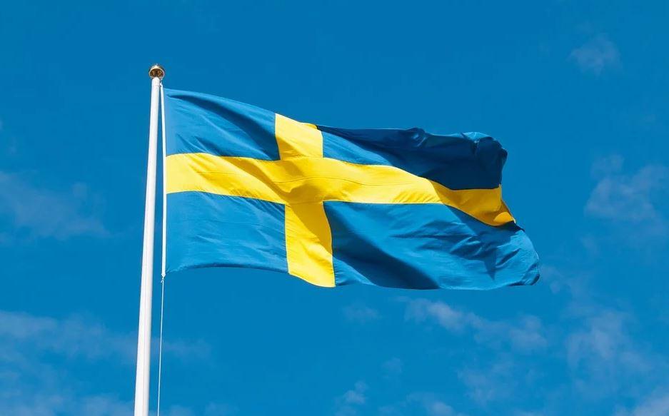 Švedų kalba (A1.1)